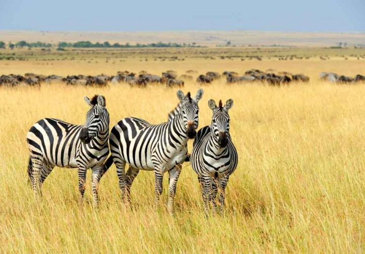 Wonders of South Africa